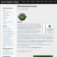 SEO Advanced Course screenshot